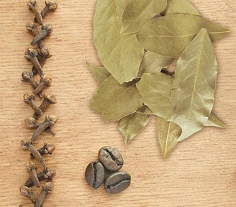 Кофейные зерна, гвоздика и лавровый лист